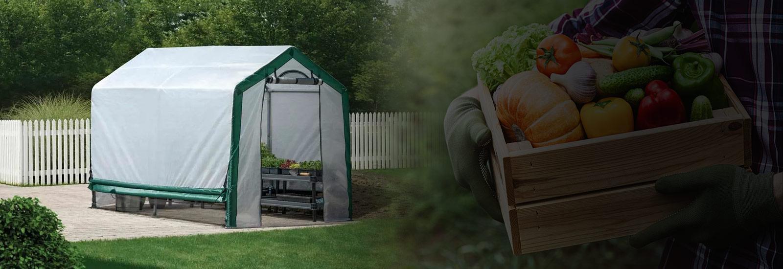 Spring Organic Growers Greenhouse