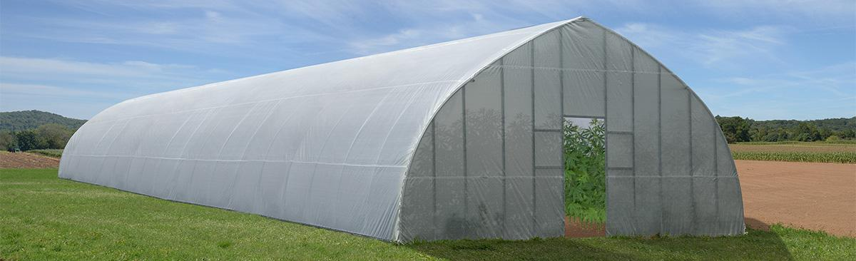 High Tunnel Greenhouse Cannabis