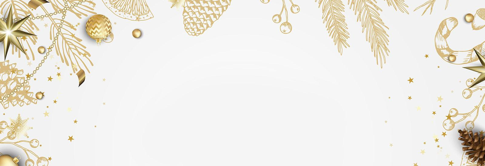 Holiday Season Background Homepage Banner