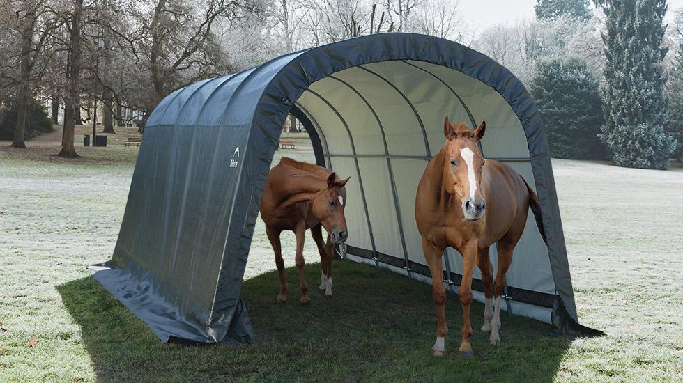 winter horses, run in shelter, horse shelter