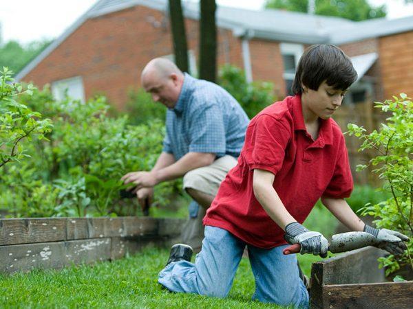 Stay Home Gardening