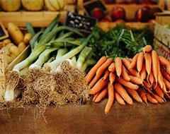 Winter Gardening Carrots Leaks Cold Frame